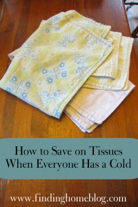 How to Save on Tissues When Everyone Has a Cold | Finding Home Blog