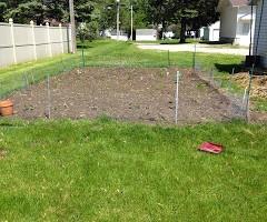 2015 Garden Update: Little Plants Are Growing!