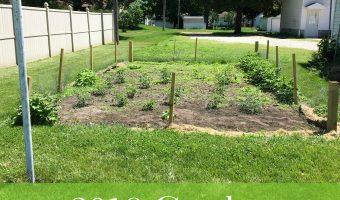 2016 Garden Beginnings