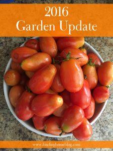 2016 Garden Update and Totals
