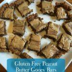 Recipe: Gooey Chocolate Peanut Butter Bars (Gluten Free!)
