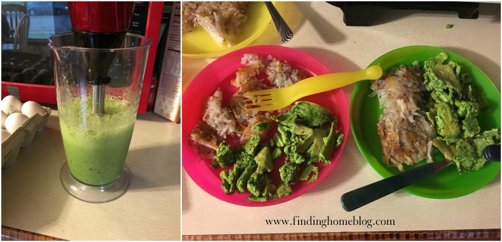 Green Eggs with Immersion Blender | Finding Home Blog