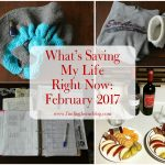 What's Saving My Life Right Now: February 2017