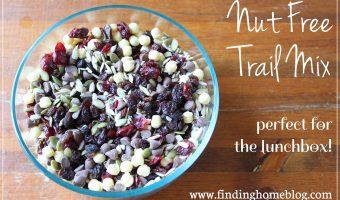 Recipe: Nut Free Trail Mix