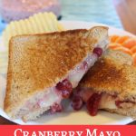 Recipe: Cranberry Mayo Turkey Melt