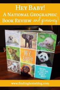 Hey Baby! A National Geographic Book Review (And Giveaway!)